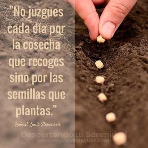 Siembra-semillas
